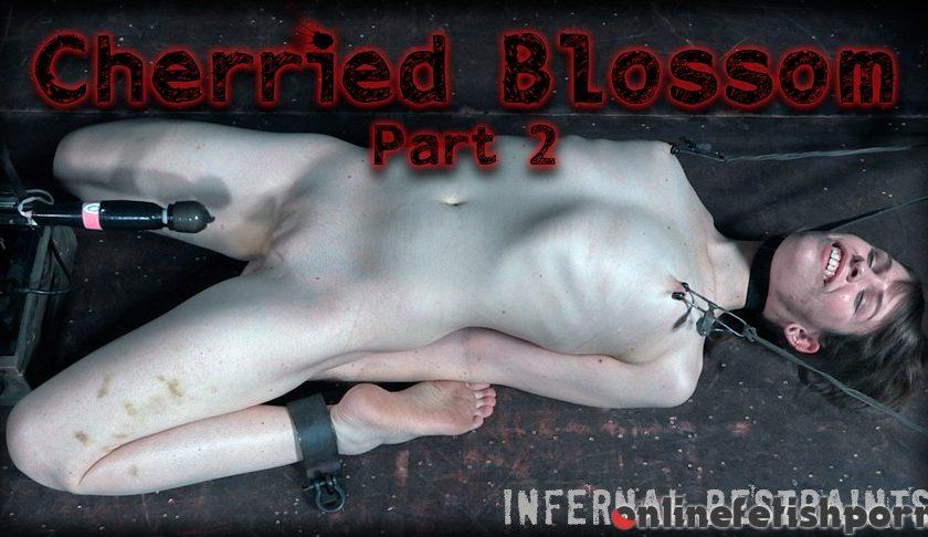 Infernalrestraints.com – Cherried Blossom Part 2 Blossom 2017 Hair Tie