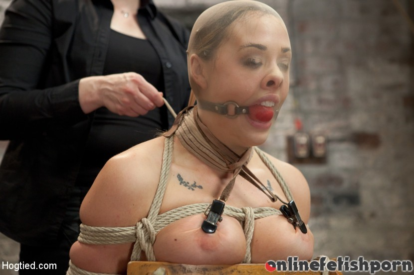 Hogtied.com – Chanel Preston Chanel Preston 2012 Fingering