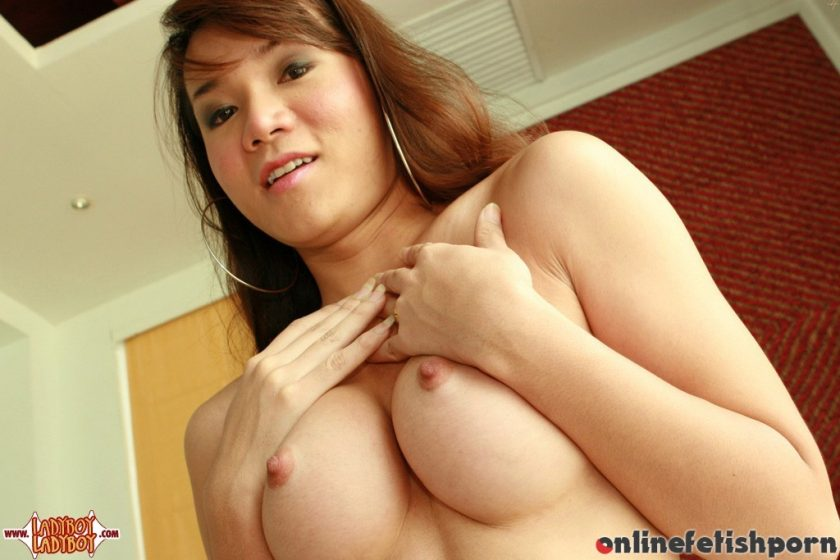 Ladyboyladyboy.com – Jeab Poses Her Thick Dick Jeab 2006 Transsexual