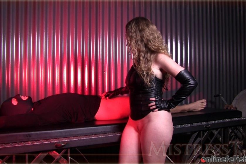 Mistresst.com – New Sex Slave Tested  2016 Domination