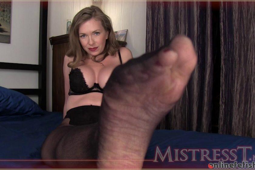 Mistresst.com – Pantyhose Perverts Jerk Off..  2013 Ass Worship